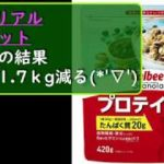 シリアルダイエットの検証/2日目の結果