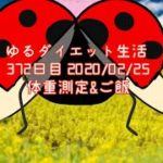 ゆるダイエット生活 372日目 体重測定&ご飯/手作り餃子