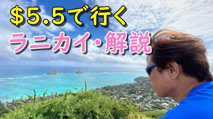 【4K】ハワイ個人旅行、バス一日券で行く、ラニカイピルボックスの行き方と注意事項