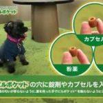 グリニーズ™ 獣医師専用 ピルポケット™ 犬用