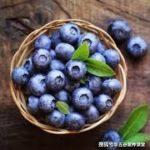 女明星抗老都吃這些食物,延緩衰老,美白淡斑,尤其能預防癌症!