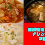 【ダイエット】脂肪燃焼!ダイエットポトフアレンジpart2