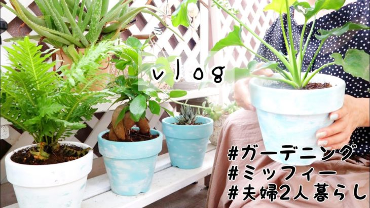 【Vlog】ガーデニング/ミッフィーグッズ/ダイエット料理/夫婦2人暮らし