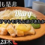 【一日の食事】ダイエット卒業の為の食事記録 | 心も健康でいたい食生活