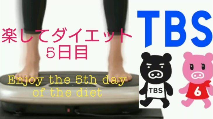 【楽してダイエット】 振動フィットネスマシンポルト  ウルトラウエーブ5日目 【Enjoy and diet 】  Ultra Wabe Day 5