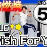 【痩せるダンス】EXILEのライブ意識で楽しく脂肪燃焼ダイエット♪振り付け簡単な初心者向け!!