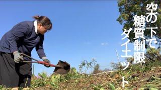 【畑作業】整地したよ!! 糖質制限ダイエットしながら畑作り