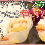 【ダイエットレシピ】レンジで5分❤️失敗なし!クリスマス🎄にふわふわおからケーキ【低糖質】