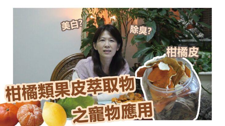 【寵物芳療】能夠美白、除臭的萃取物?!柑橘類果皮萃取之寵物應用
